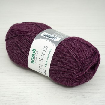 Gruendl Hot Socks Uni 50, 50г/210м, цвет 60